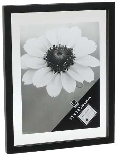 Umbra Document Series 11 Inch By 14 Inch Frame Black New Free