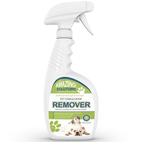 Details About Best Pet Stain Remover And Odor Eliminator Carpet Cleaner For Dog Urine And Cat